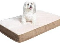 10 Best Dog Beds For Hip Dysplasia (Reviews Updated 2021)