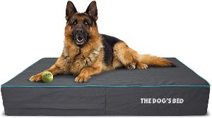The Dog's Bed Orthopedic Dog Bed, Premium Memory Foam S Xxxl, Waterproof, Dog Pain Relief For Arthritis, Hip & Elbow Dysplasia, Post Surgery