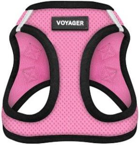 Voyager Step In Air Dog Harness All Weather Mesh, Step In Vest Harness For Small Dogs And Cats By Best Pet Supplies