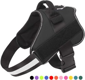 Https Www.amazon.com Harness Reflective Adjustable Outdoor Walking Dp B07ft8lmcw Tag=dogproductpic