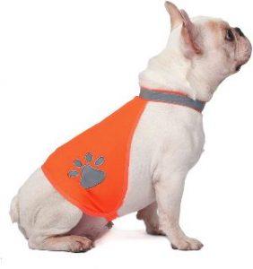 A Safety Dog Reflective Vest, Hi Vis Safety Vest Keeps Dogs Visible On And Off Leash In Both Urban A