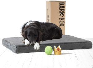 Barkbox Memory Foam Platform Dog Bed Plush Mattress For Orthopedic Joint Relief Machine Washable