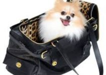 5 Best Dog Carrier Purses (Reviews Updated 2021)