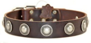 Dean And Tyler Simple Treasure , Leather Dog Collar With Solid Nickel Hardware Brown Size 20 In