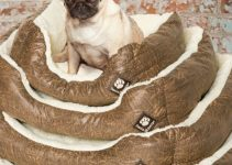 Dog Bed For Pugs