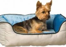 5 Best Dog Beds for Yorkshire Terriers (Reviews Updated 2021)