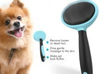 5 Best Dog Brushes for Pomeranians (Reviews Updated 2021)