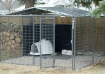 5 Best Dog Crates for Huskies (Reviews Updated 2021)