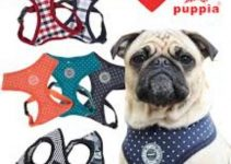 Dog Harness For Pugs