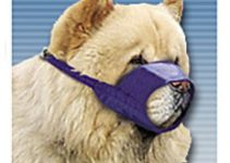 Dog Muzzle For Chow Chows