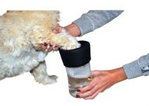 5 Best Dog Paw Cleaners (Reviews Updated 2021)