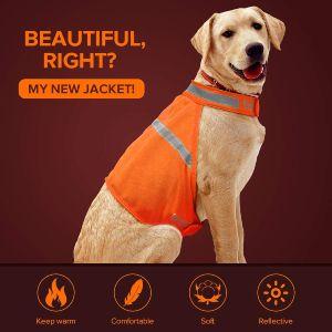 Dog Reflective Vest High Visibility Adjustable Strap Safety Jacket Keep Your Dog Be Seen And Safe Fr