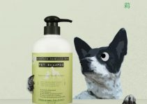 5 Best Dog Shampoos for Boston Terriers (Reviews Updated 2021)