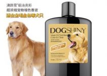 5 Best Dog Shampoos for Golden Retrievers (Reviews Updated 2021)