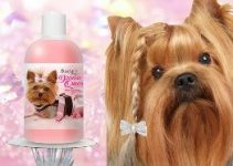 Dog Shampoo For Yorkshire Terriers (reviews Updated 2020)