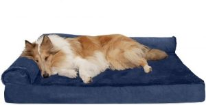 Furhaven Pet Dog Bed Ergonomic Contour Lounger & Therapeutic Sofa Style Living Room Couch & Pet Be (1)