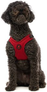 Gooby Escape Free Sport Harness, Small Dog Step In Neoprene Harness For Dogs That Like To Escape T