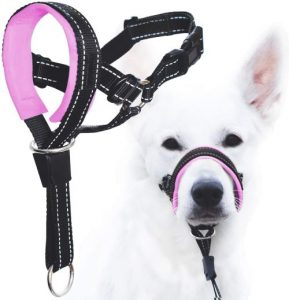 Goodboy Dog Head Halter With Safety Strap Stops Heavy Pulling On The Leash Padded Headcollar For