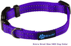 Max And Neo Neo Nylon Buckle Reflective Dog Collar We Donate A Collar To A Dog Rescue For Every C