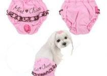 Period Panties For Dogs