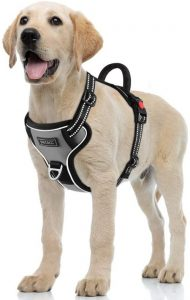 Petacc Dog Harness No Pull Pet Harness Adjustable Outdoor Pet Reflective Vest Dog Walking Harness Wi