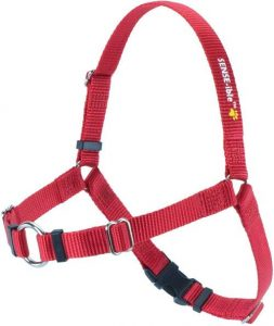Sense Ible No Pull Dog Harness Red Medium By Softouch