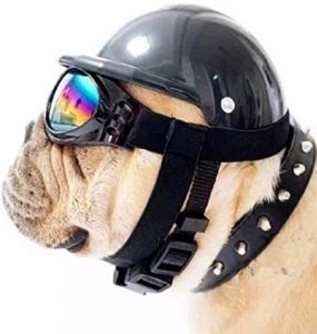 Shoptrend Dog Hat With Goggles Abs Hard Plastic Ridding Cap Toy 3 Sizes With 6 Colors (1 Hat + 1 Go