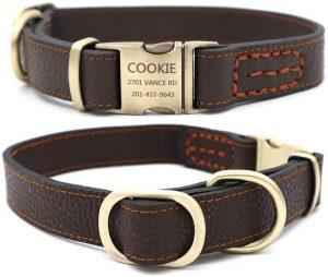 Youyixun Personalized Id Dog Collar