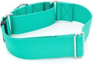 1 1 2 Inch Width Martingale Dog Collars Heavy Duty Nylon (1.5 Width Dog Collars