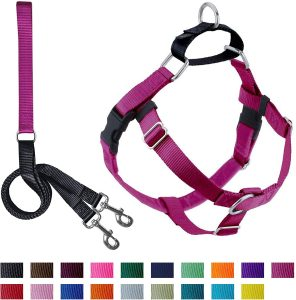 2 Hounds Design Freedom No Pull Dog Harness With Leash