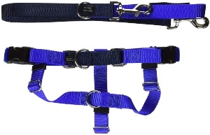 2 Hounds Design Freedom No Pull Dog Harness With Leash, Large, 1 Inch Wide, Royal Blue