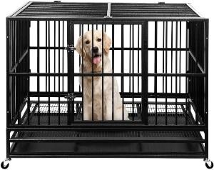 Ainfox Heavy Duty Metal Dog Crate, Large Double Door Folding