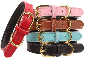 Aolove Basic Classic Padded Leather Pet Collars For Cats Puppy Small Medium Dogs