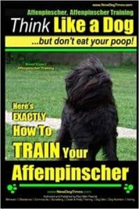Affenpinscher, Affenpinscher Training Think Like A Dog But Don't Eat Your Poop! Breed Expert A