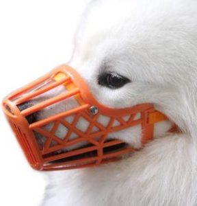 Alfie Pet Paxton Adjustable Quick Fit Plastic Muzzle Color Orange