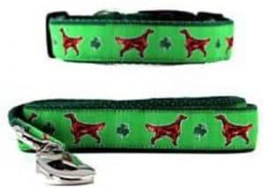 Animal Den Irish Setter Collar & Leash
