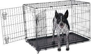 Animaze 2 Door Folding Dog Crate