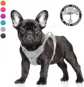 Barkbay No Pull Dog Harness Large Step In Reflective Dog Harness With Front Clip And Easy Control Ha