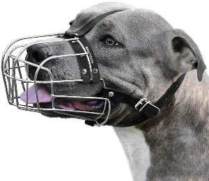 Bronzedog Dog Muzzle Pitbull Metal Mask Amstaff Wire Basket Pit Bull Adjustable Leather Straps For Large Dogs