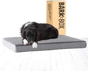 Barkbox Memory Foam Platform Dog Bed