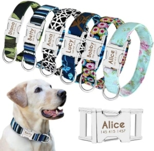 Beirui Personalized Dog Collar With Name Plate Fashion Patterns Custom Dog Collar With Quick Rele