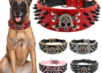 5 Best Dog Collars for Boxadors (Reviews Updated 2021)