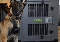 5 Best Dog Crates for Belgian Malinois (Reviews Updated 2021)