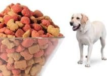 Best Dog Food With Zinc