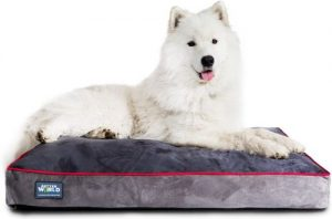Better World Pets 5 Inch Thick Orthopedic Dog Bed Pure Premium Shredded Memory Foam Ideal For Agin