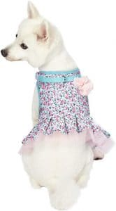 Blueberry Pet 10+ Patterns Made Well Floral Collection Dog Collars, Harnesses, Leashes, Harness D