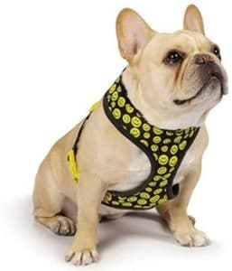 Casual Canine Smiley Face Harness, Small, Black