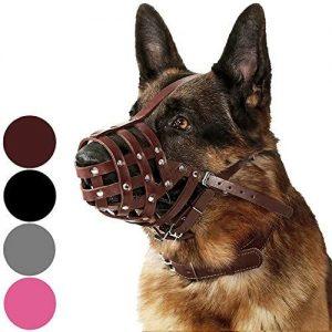 Collardirect Dog Muzzle German Shepherd Dalmatian Doberman Setter Leather Basket Medium Large Breed