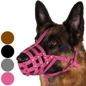 Collardirect Dog Muzzle German Shepherd Dalmatian Doberman Setter Leather Basket Medium Large Breeds