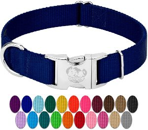 Country Brook Petz Premium Nylon Dog Collar With Metal Buckle Vibrant 25 Color Selection